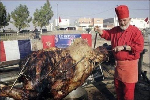 stuffed-camel3